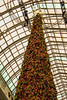 Eaton Centre Xmas Tree 1