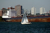 Sailboat and Freighter