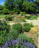 High Park Garden View