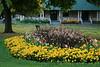 East Rivewrside Park - Flowers