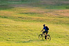 Cyclist on the Grass