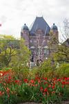Legislature Building with Tulips