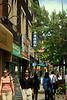 Bloor Street in the Annex