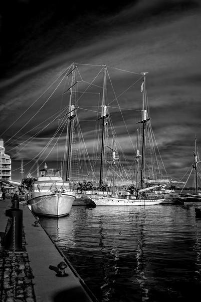 Pathfinder, Toronto Harbour Front