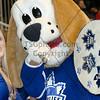 Toronto Marlies vs St-John's Ice Caps, Sunday December 4th, 2011