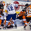 AHL Toronto Marlies vs Adirondack Phantoms, Toronto Ontario, February 14, 2012
