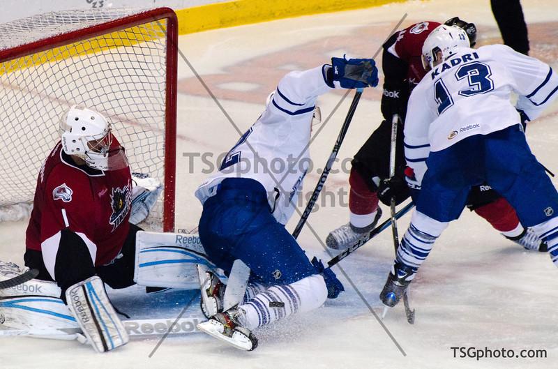 AHL Toronto Marlies vs Lake Erie Monsters, Toronto ON, February 20, 2012
