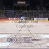 AHL Toronto Marlies vs Abbottsford Heat, Toronto Ontario, February 4, 2012