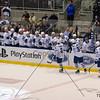 AHL Toronto Marlies vs St-John's Ice Caps, January 1st, 2012