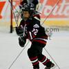 AHL Toronto Marlies vs Houston Aeros, February 18, 2013
