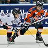 AHL Toronto Marlies vs Hamilton Bulldogs, February 2, 2013