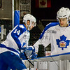 AHL Toronto Marlies vs Houstn Aeros, February 18, 2013