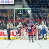 NOVEMBER 30th, 2014 - TORONTO CANADA - The AHL Toronto Marlies  battle against the Lake Erie Monsters at Ricoh Coliseum  (Photo credit: Christian Bonin/TSGphoto.com)