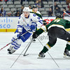February 21st, 2015 - TORONTO CANADA - The Toronto Marlies  face off against the Texas Stars at Ricoh Coliseum in Toronto, Ontario. (Photo credit: Christian Bonin/TSGphoto.com)