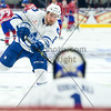 January 24th, 2015 - TORONTO CANADA - The Toronto Marlies  battle against the Hamilton Bulldogs, AHL affiliate of the NHL Montreal Canadiens at Ricoh Coliseum  (Photo credit: Christian Bonin/TSGphoto.com)