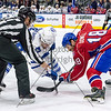 March 28th, 2015- TORONTO CANADA - The Toronto Marlies  battle against the Hamilton Bulldogs for the last time in their storied 10 year rivalry.  (Photo credit: Christian Bonin/TSGphoto.com)