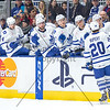 March 6th, 2015 - TORONTO CANADA - The Toronto Marlies take on the Adirondack Flames at Ricoh Coliseum, the first of three home games in three days for the Marlies. (Photo credit: Christian Bonin/TSGphoto.com)
