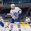 NOVEMBER 1st, 2014 - TORONTO CANADA - The AHL Toronto Marlies  battle against the Rochester Americans at Ricoh Coliseum  (Photo credit: Christian Bonin/TSGphoto.com)