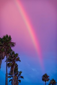 Rainbow 2 Torrance