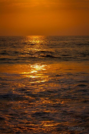 Golden Glow on ocean Torrance Beach