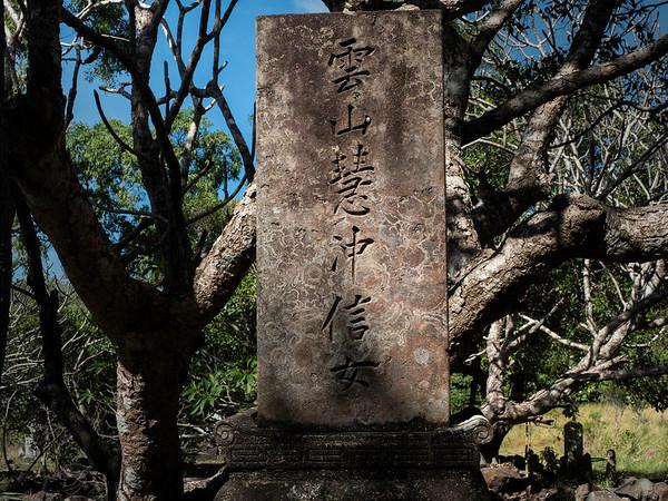 Part of Japan under Australian trees.