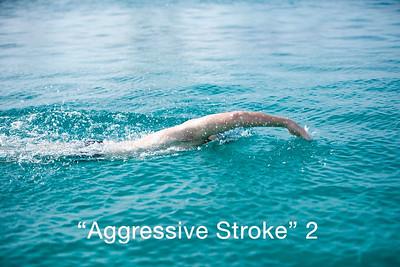 agressive stroke 2