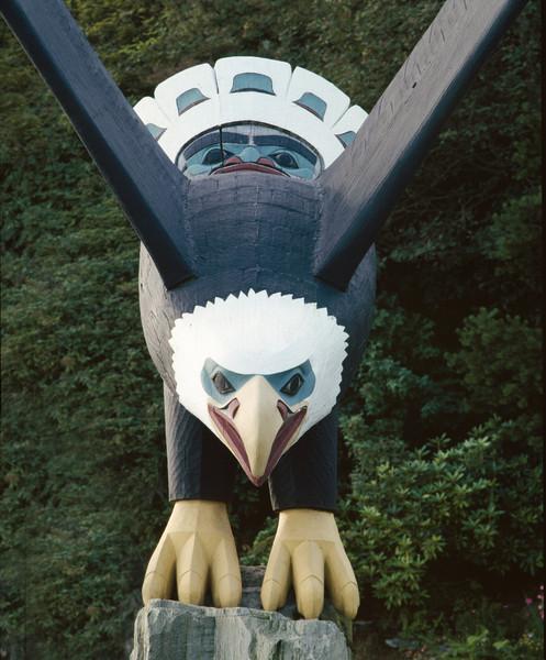 9909007 Nathan Jackson Eagle-Edit
