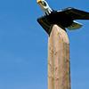 Soaring Eagle Pole