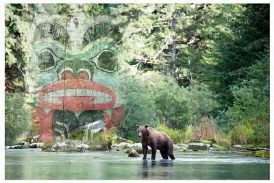 Spirit of the Bear