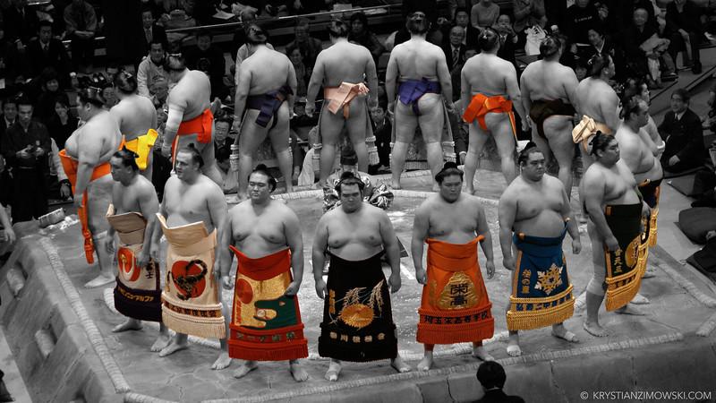 Sumo Circle