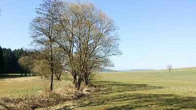 Am Moosbach südwestlich von Prackendorf
