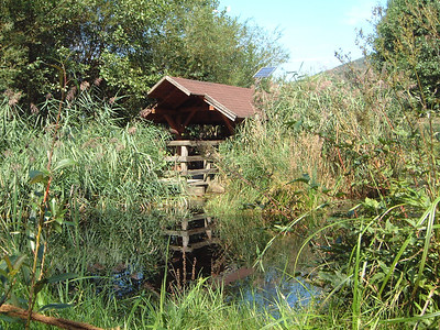 Wildgarten Furth