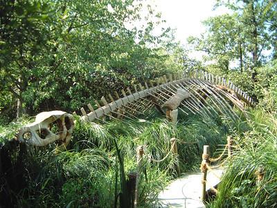 Wildgarten Furth Dieses Dino-Skelett ist aus Holz und ebenfalls im genialen Wildgarten in Furth. Beisst nicht und schlägt nicht mit dem Schwanz.