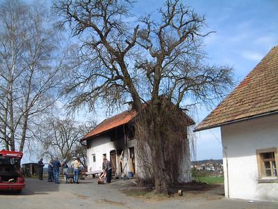 Bauernbrot aus dem Holzofen am Randsberg