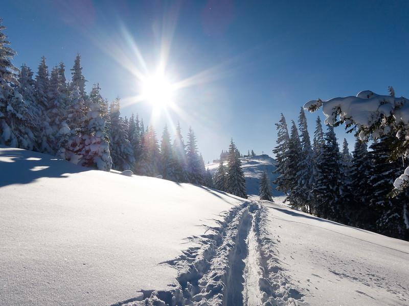 Kurz vor dem Gipfel des Tirolerkogels (im Hintergrund)