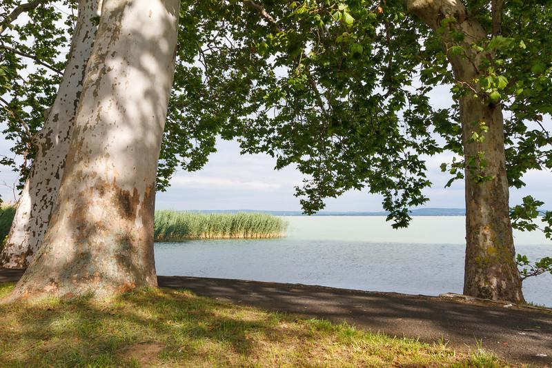 Promenade von Révfülöp; zum ersten mal nahe am See