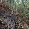 Eine etwas ungute Bachquerung mitten im Wald