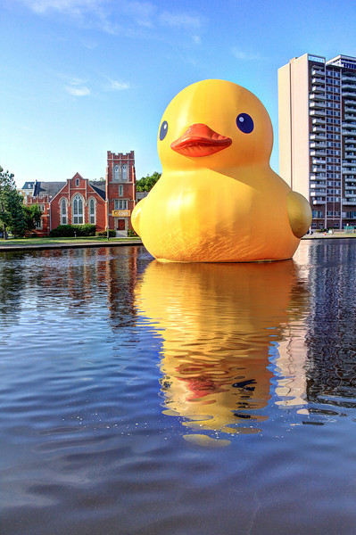 Rubber Duck Statue on the Hague