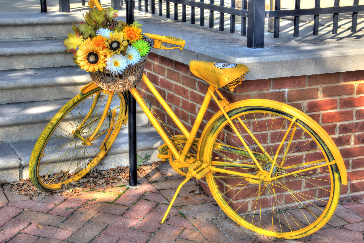 East Beach Sandwich Company Bike Art - Oceanview Norfolk