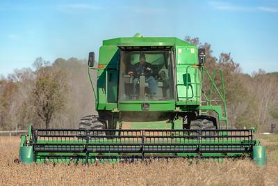 """Harvest Day"""