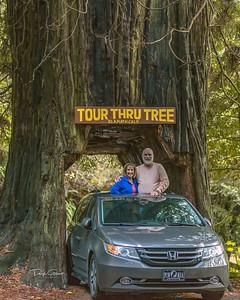 """Klamath National Forest"""