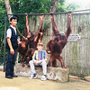 Singapore Zoo .....  Nathan