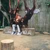 Singapore Zoo ... Nathan !