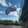 The Murray River Flag