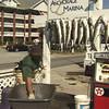 "Ad - The Anchorage Inn and Marina - Ocracoke -  <a href=""http://www.theanchorageinn.com"">http://www.theanchorageinn.com</a>"