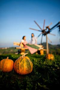 Steiermark Herbst_8560