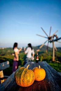 Steiermark Herbst_8554
