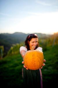 Steiermark Herbst_8781