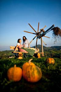 Steiermark Herbst_8581