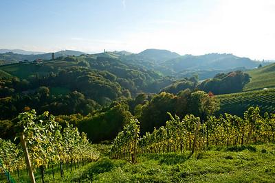 Steiermark Herbst_8351
